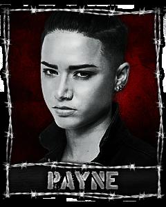 240x300_Payne.png