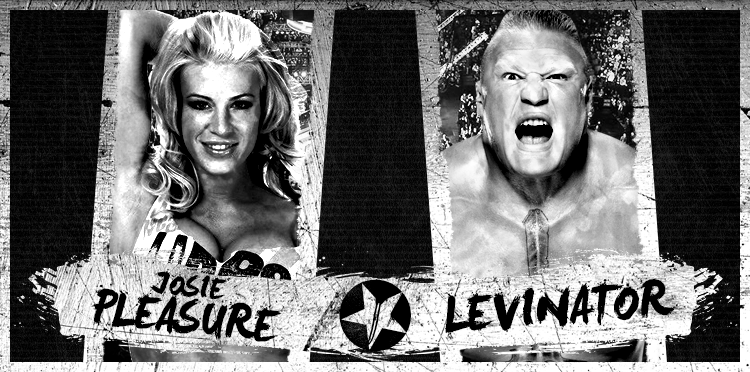 LO28_Pleasure-vs-Lev.png
