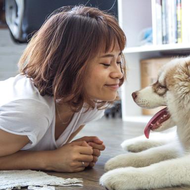People & pet photos