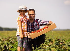 young-man-farmer-working-in-the-garden-p