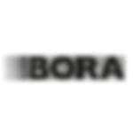 bora_1.png