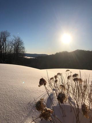 hiver%20hatley_edited.jpg