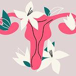 uterus.jpg