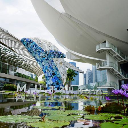 """Studio KCA """"skyscraper"""" reloction Singapore 2019"""