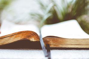 Bible-LR.jpg