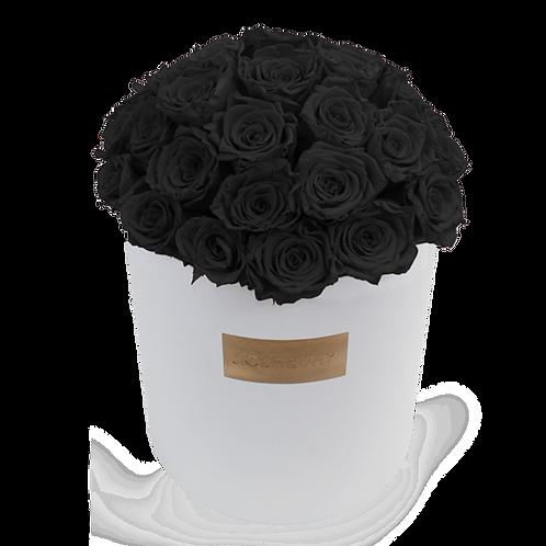 Black eternity roses - huge white round box