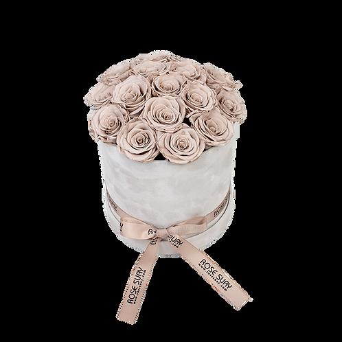 khaki eternity roses - beige round velvet box