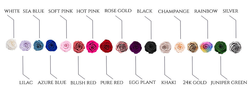 rose color website.jpg
