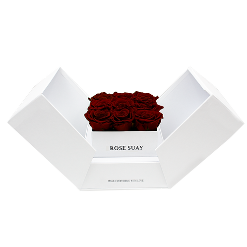 wine red eternity roses - white cube box
