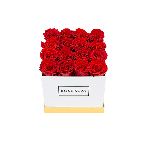 red eternity roses - small white square box