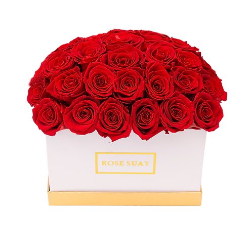 red eternity roses - small white rectangle box
