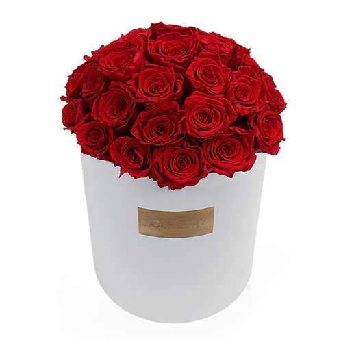 red eternity roses - Huge white round box
