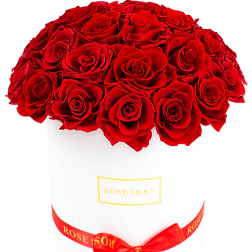 red eternity roses - white large round box