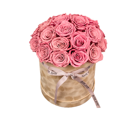 blush red eternity roses -medium beige brown round velvet box