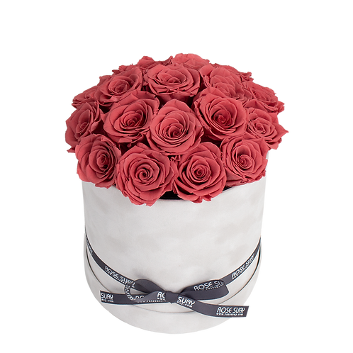 blush red eternity roses - large white velvet round box