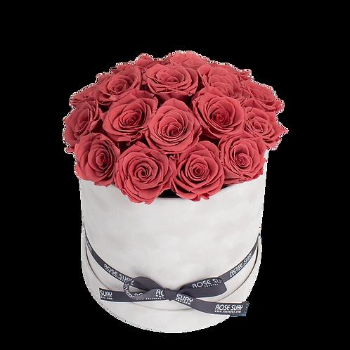 blush red eternity roses - large white velvet round box