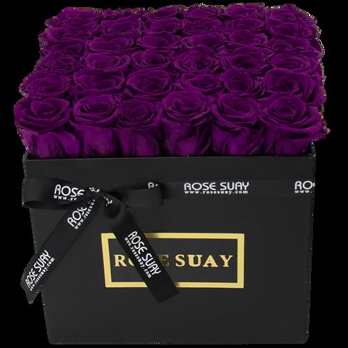egg plant eternity roses - venti black square box