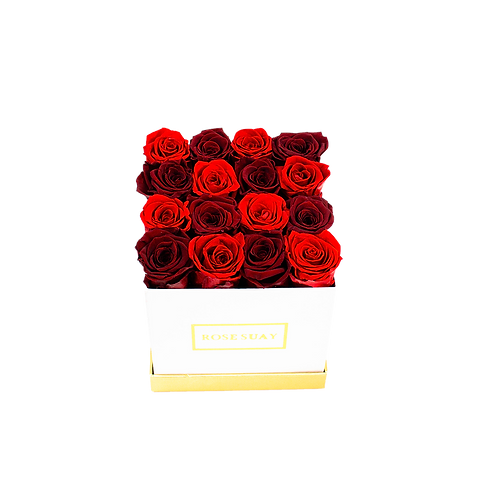 wine red-red eternity roses - small white square box