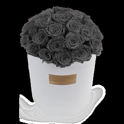 Gray eternity roses - huge white round box