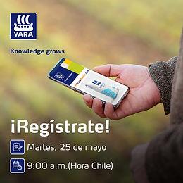 Yara lanza plataforma de e-commerce para agricultores en Chile