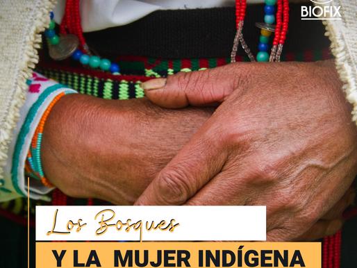 El papel de la mujer indígena en la conservación de los bosques