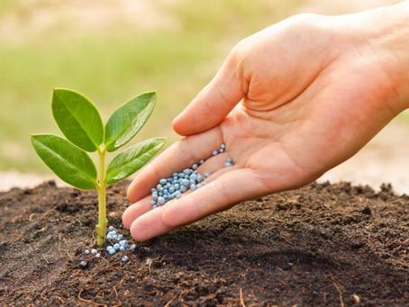 Dos de cada cinco personas en el mundo se alimentan gracias a los fertilizantes