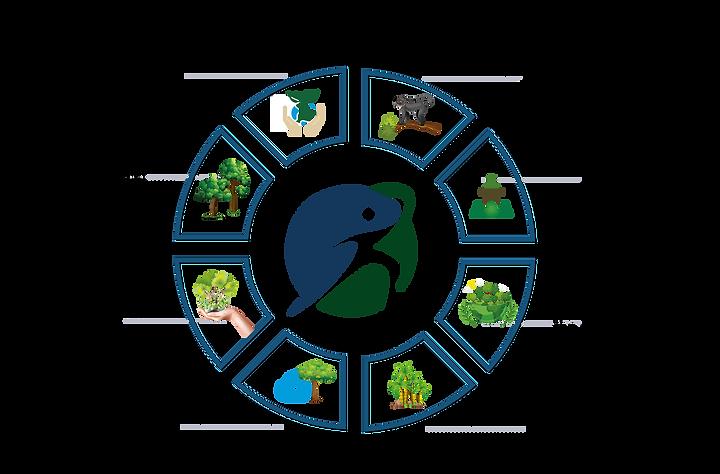 Plan-de-Conservación-Anukwe-ingles.png