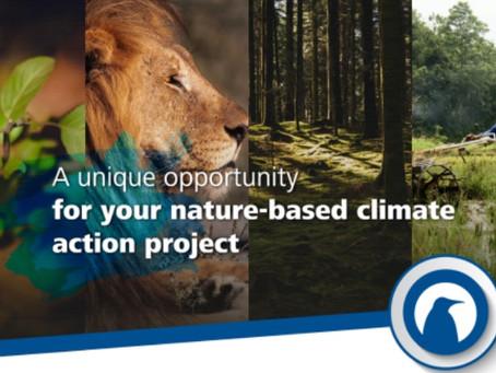 Una oportunidad única para su proyecto de acción climática basado en la naturaleza
