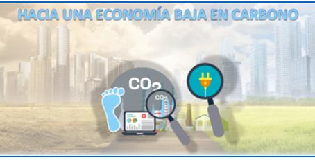 Sustentabilidad basada en el know-how, pragmatismo y enfoque en los resultados