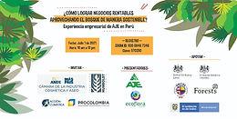 ¿Cómo lograr negocios rentables usando el bosque de manera sostenible?