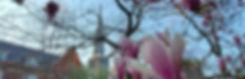 20200422_190845_edited_edited.jpg