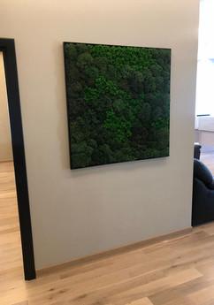 Панно из лесного мха ягель в офисе юридической компании
