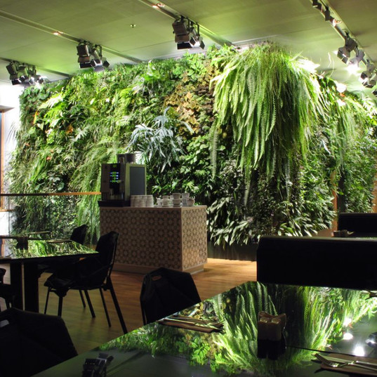 е, Фитостена, Живые растения Автополив  Санкт-Петербург Спб. Зеленая стена  ЭКО дизайн