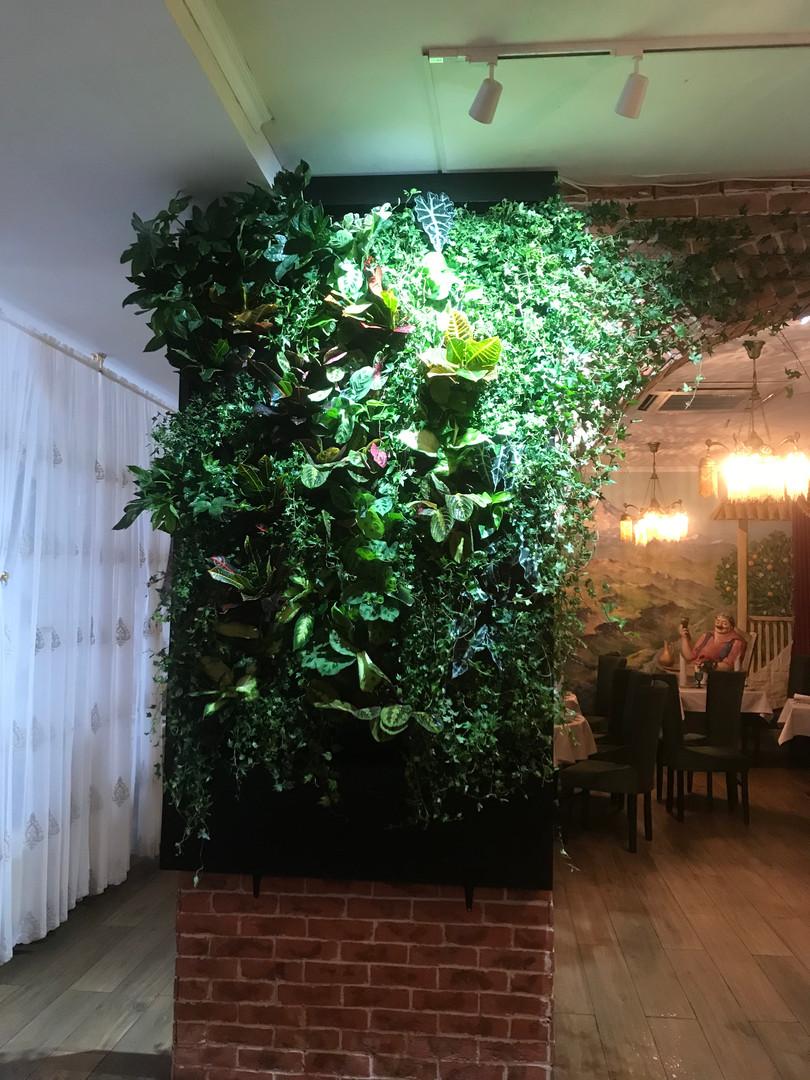 Вертикальное озеленение ресторана
