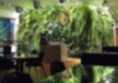 creative-hanging-office-garden-ideas.jpg