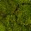 Thumbnail: Стена из мха Пласты 250*300