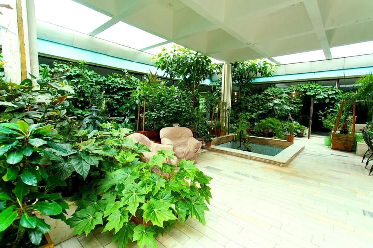 Зимний сад, оранжерея. Строительство и благоустройство в СПб