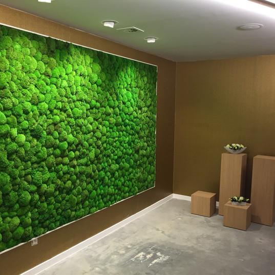 GoGardenspb Cтабилизированный мох, декор из мха Ягель Кочки Пласты Санкт-Петербург Спб. Зеленая стена Фитостена ЭКО дизайн