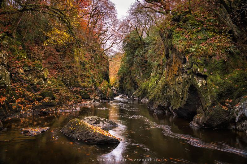 Fairy Glen in late Autumn