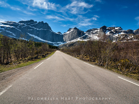 Road to Nusfjord