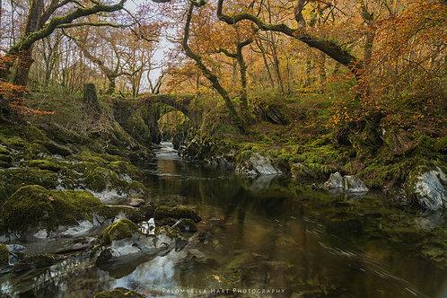 Roman Bridge in Autumn