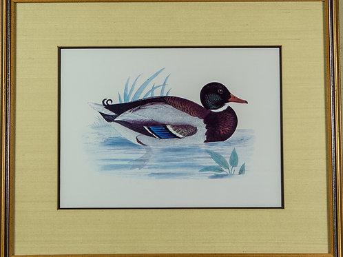 83 Ducks (Set of 2 Prints) | Canards (Ensemble de 2 estampes numériques)