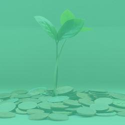 web asset_monthly donation_green.jpg