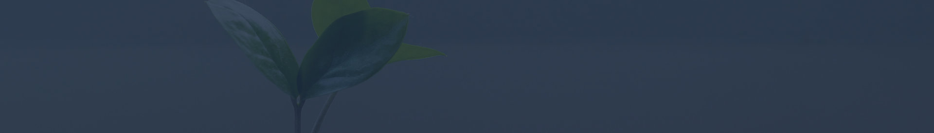web asset_monthly donation banner_navy.j