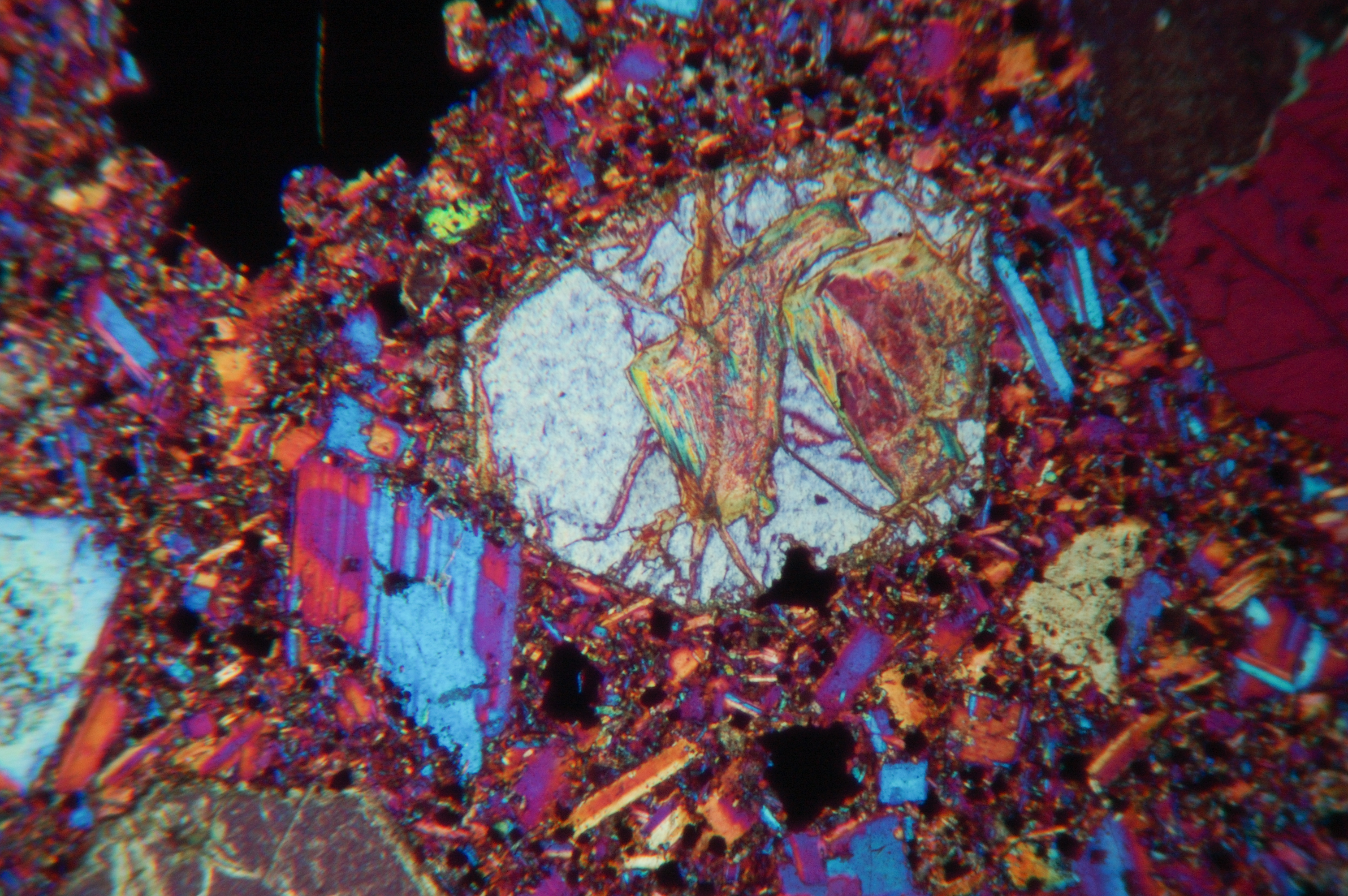 micrograph1.jpg