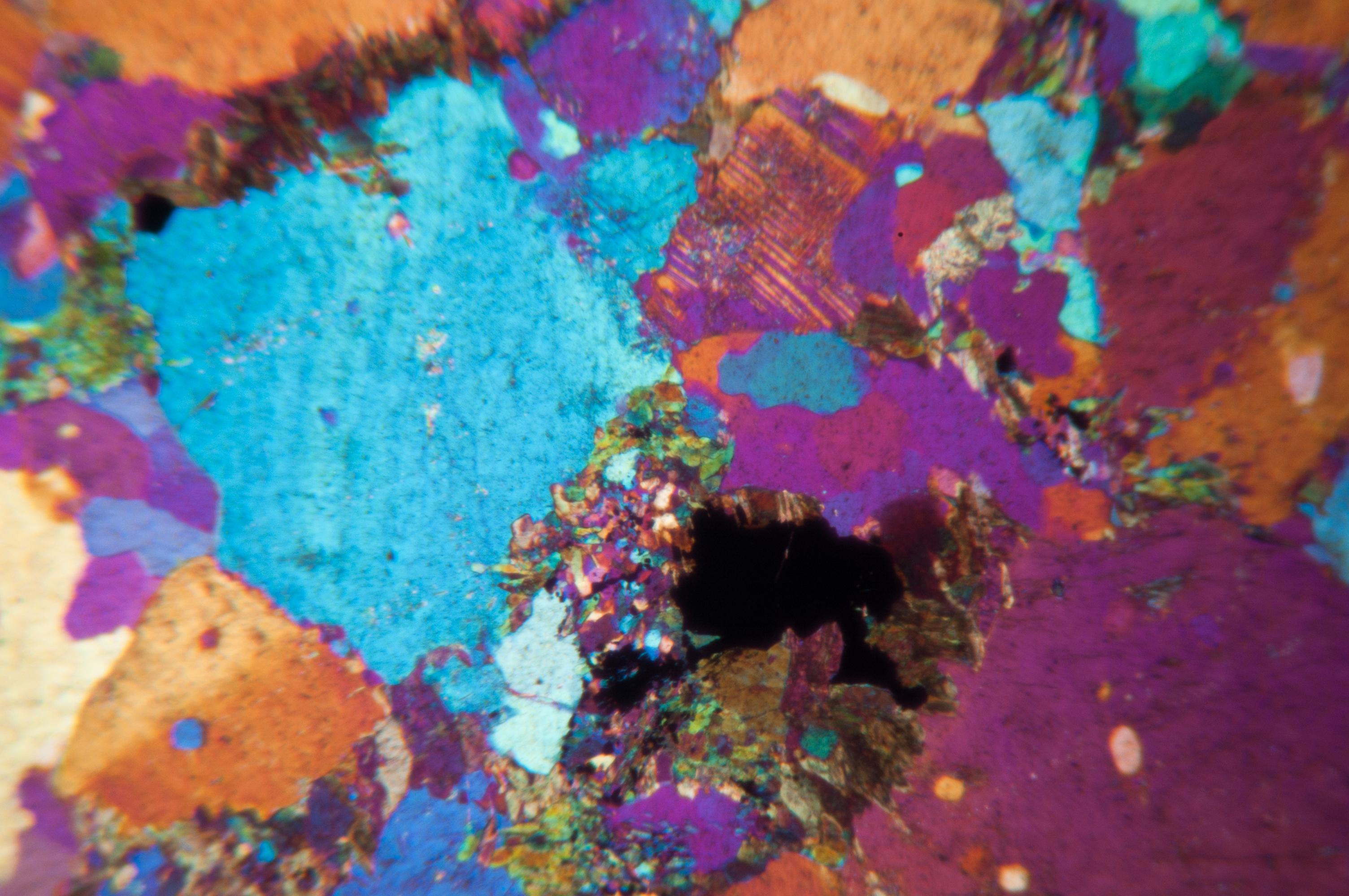 micrograph10.jpg