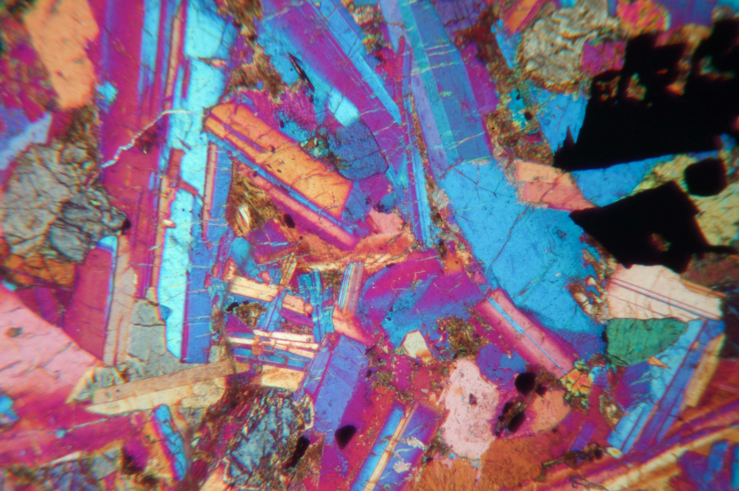micrograph3.jpg