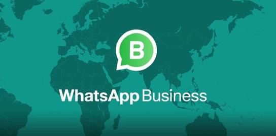 biaya whats app whatsapp business.jpg