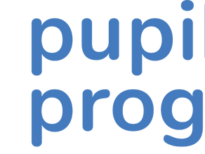 Review of Data Tracking software by Pupil Progress