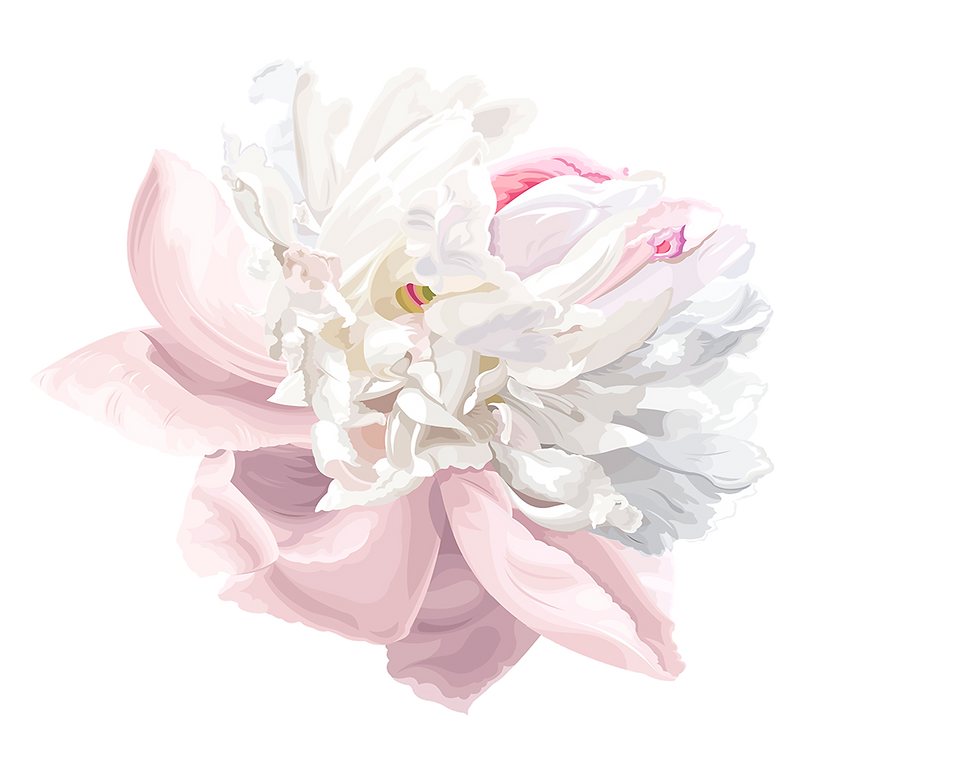 kisspng-watercolor-painting-peony-peony-5ac1b14a11a531.6859226915226432740723.png